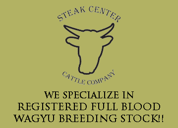 Steak Center
